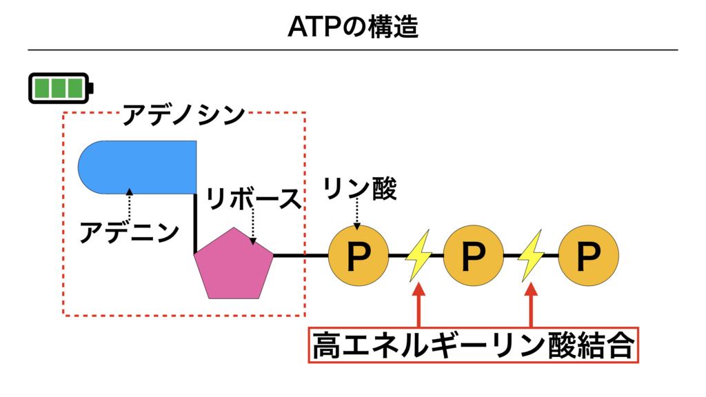 f:id:shimasensei:20180225161254j:plain