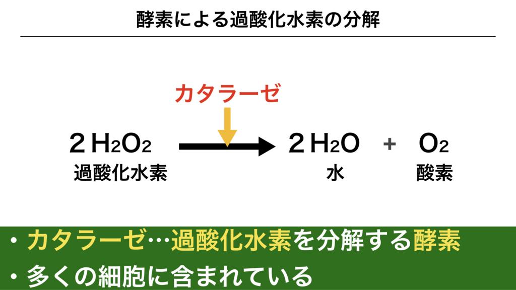 f:id:shimasensei:20180225193930j:plain