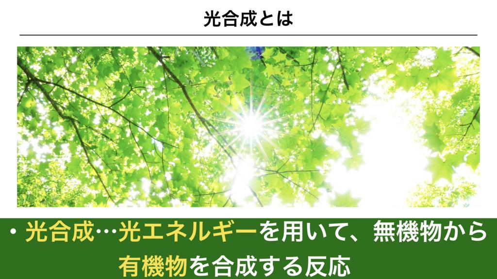 f:id:shimasensei:20180226170935j:plain