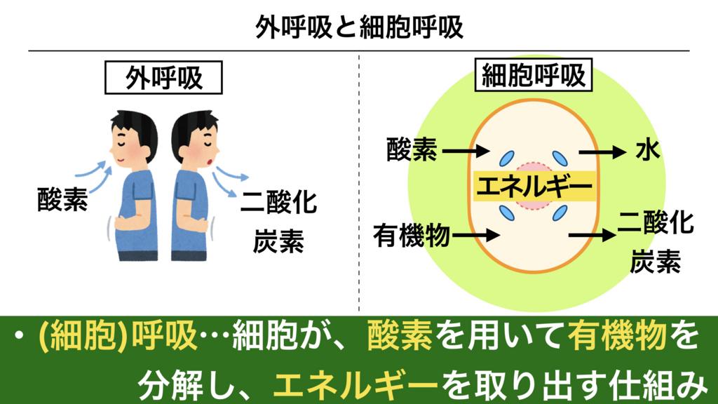 f:id:shimasensei:20180226203213j:plain