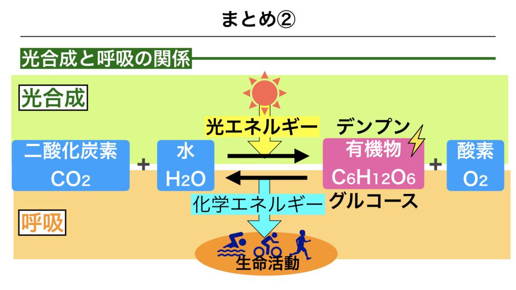 f:id:shimasensei:20180226203337j:plain