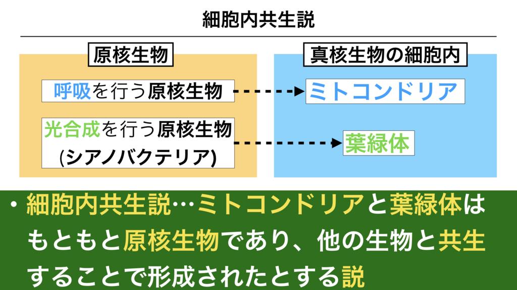 f:id:shimasensei:20180227173708j:plain