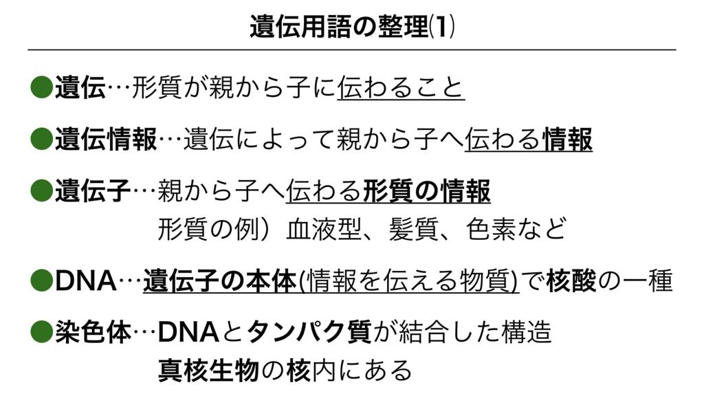 f:id:shimasensei:20180228184046j:plain