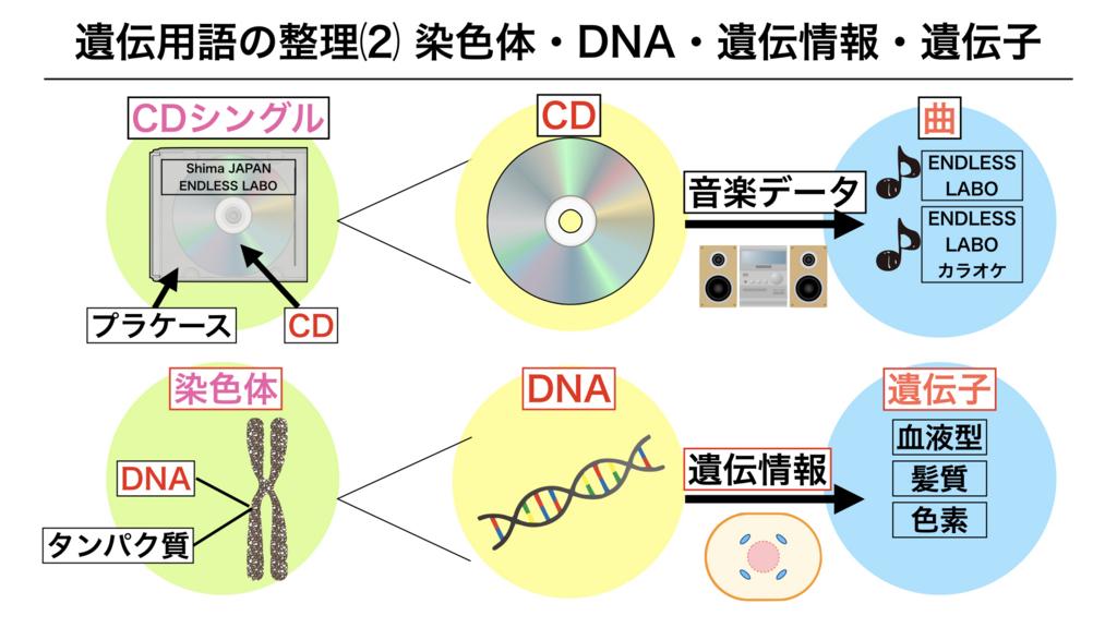 f:id:shimasensei:20180228184103j:plain