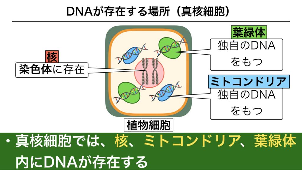 f:id:shimasensei:20180228184118j:plain