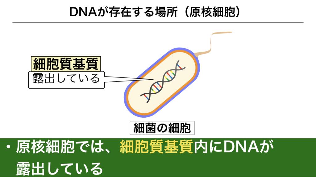 f:id:shimasensei:20180228184145j:plain