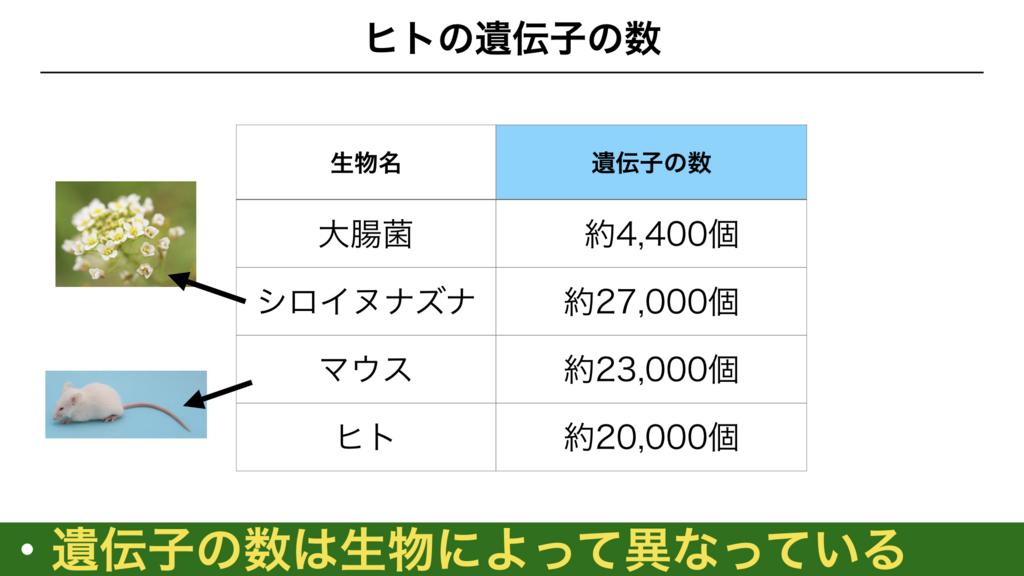 f:id:shimasensei:20180301173230j:plain