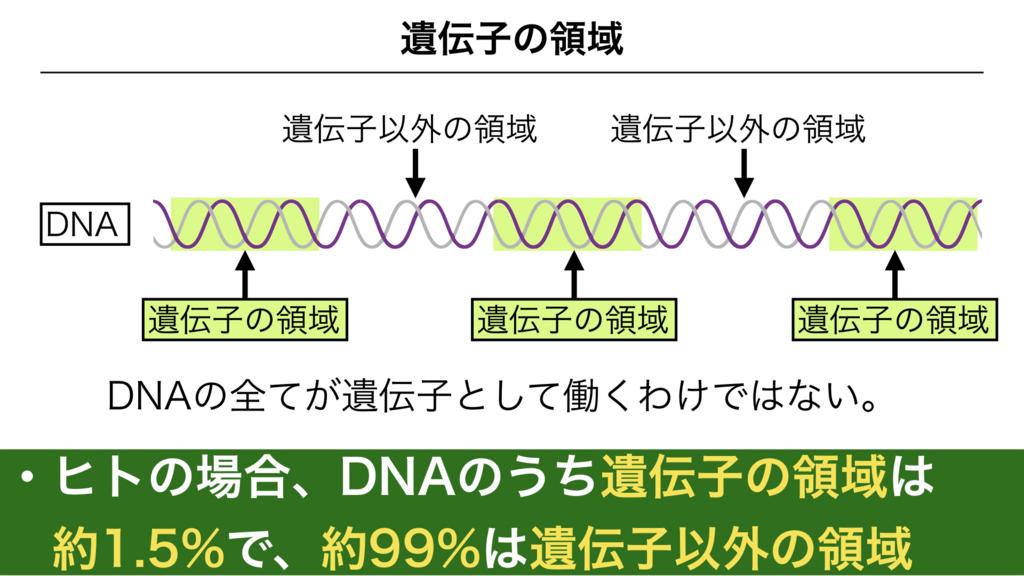 f:id:shimasensei:20180301173250j:plain