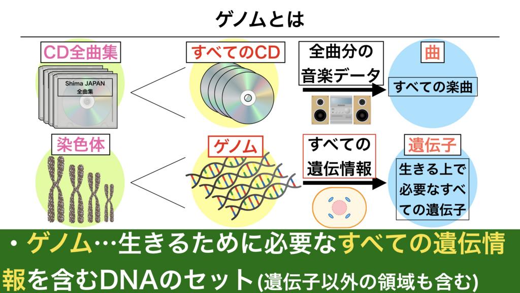 f:id:shimasensei:20180301173457j:plain
