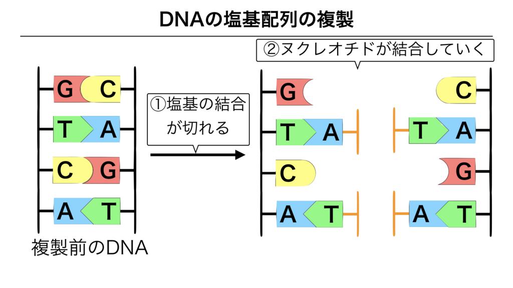 f:id:shimasensei:20180301202133j:plain