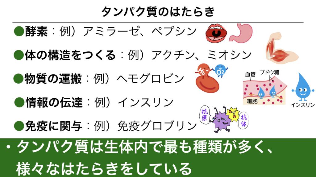 f:id:shimasensei:20180302165122j:plain