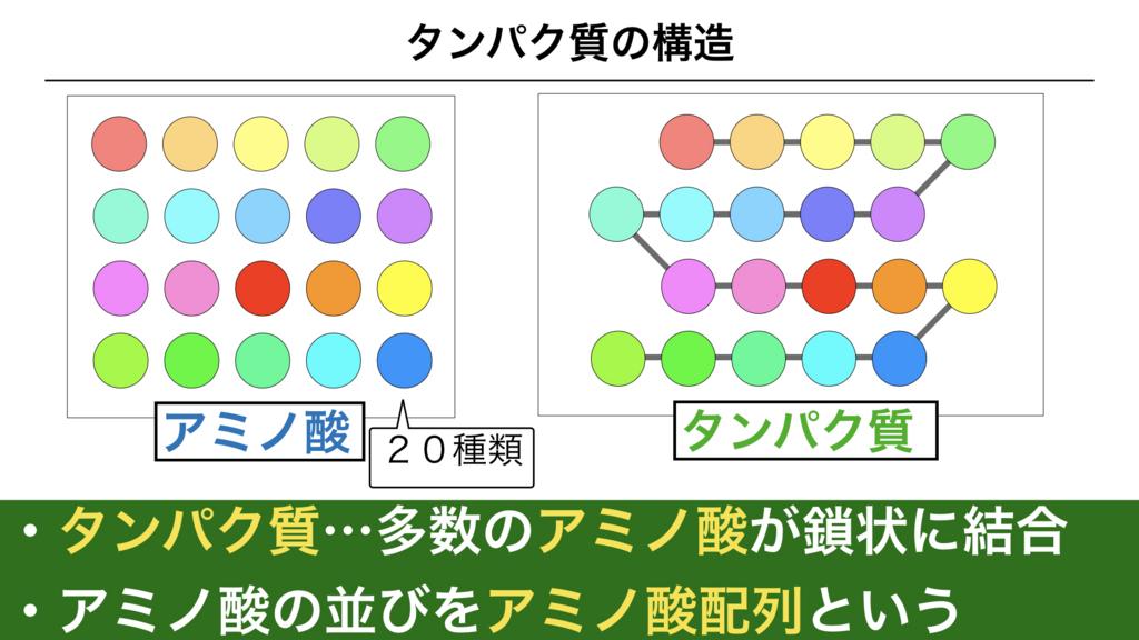 f:id:shimasensei:20180302165200j:plain