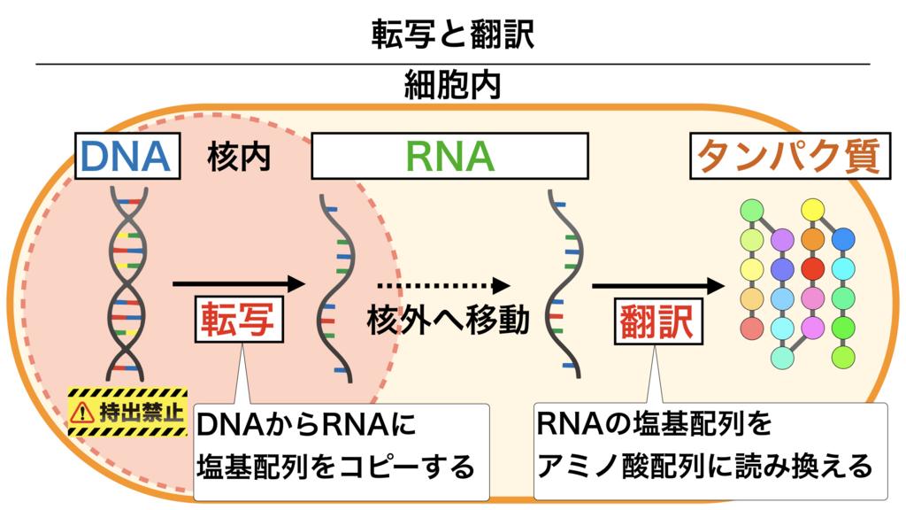 f:id:shimasensei:20180303111923j:plain
