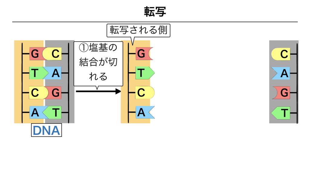 f:id:shimasensei:20180303112040j:plain