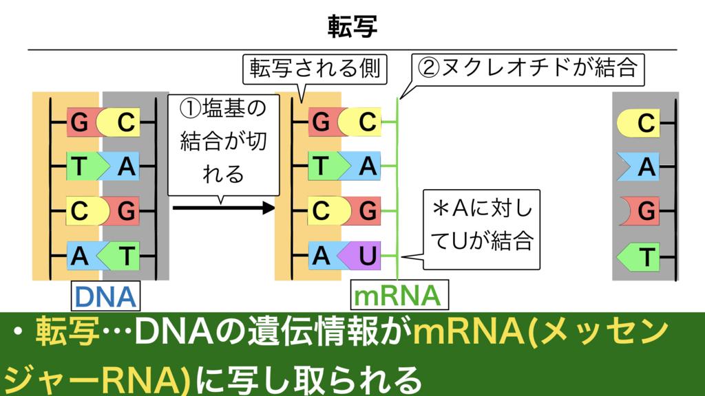 f:id:shimasensei:20180303112101j:plain