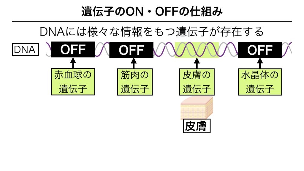 f:id:shimasensei:20180303141554j:plain