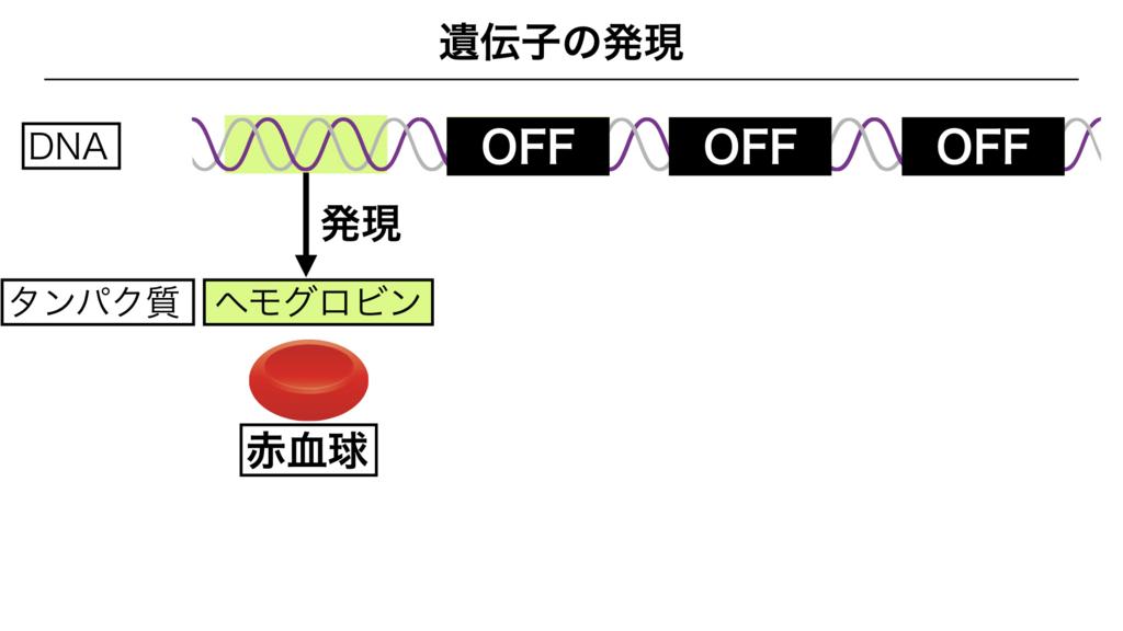 f:id:shimasensei:20180303141715j:plain