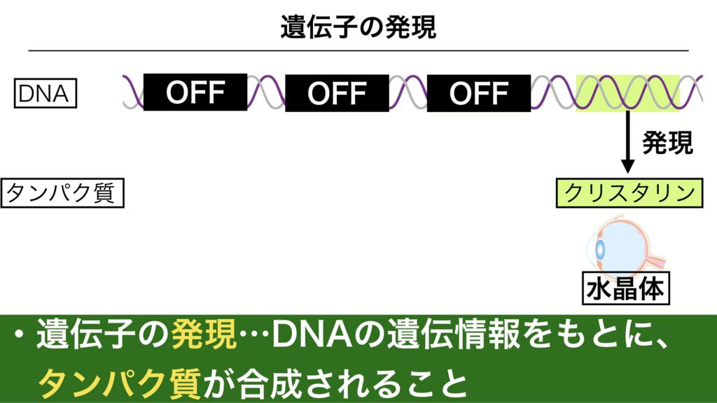 f:id:shimasensei:20180303141953j:plain