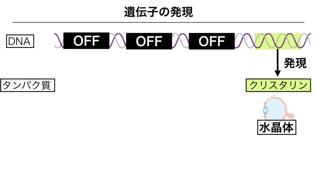 f:id:shimasensei:20180303142215j:plain
