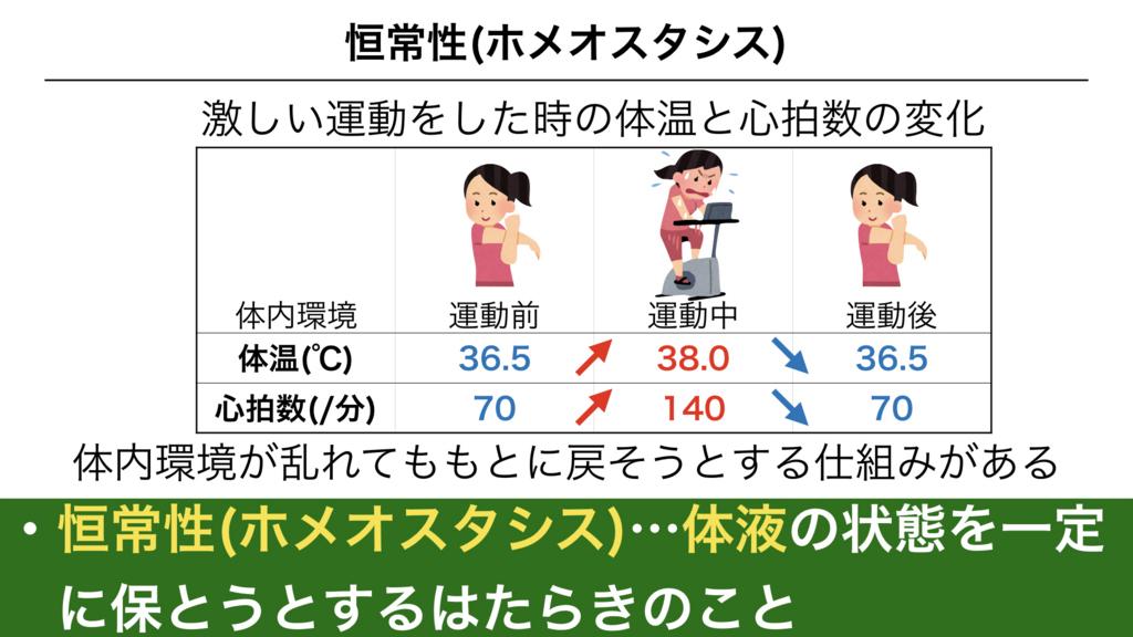f:id:shimasensei:20180304191849j:plain