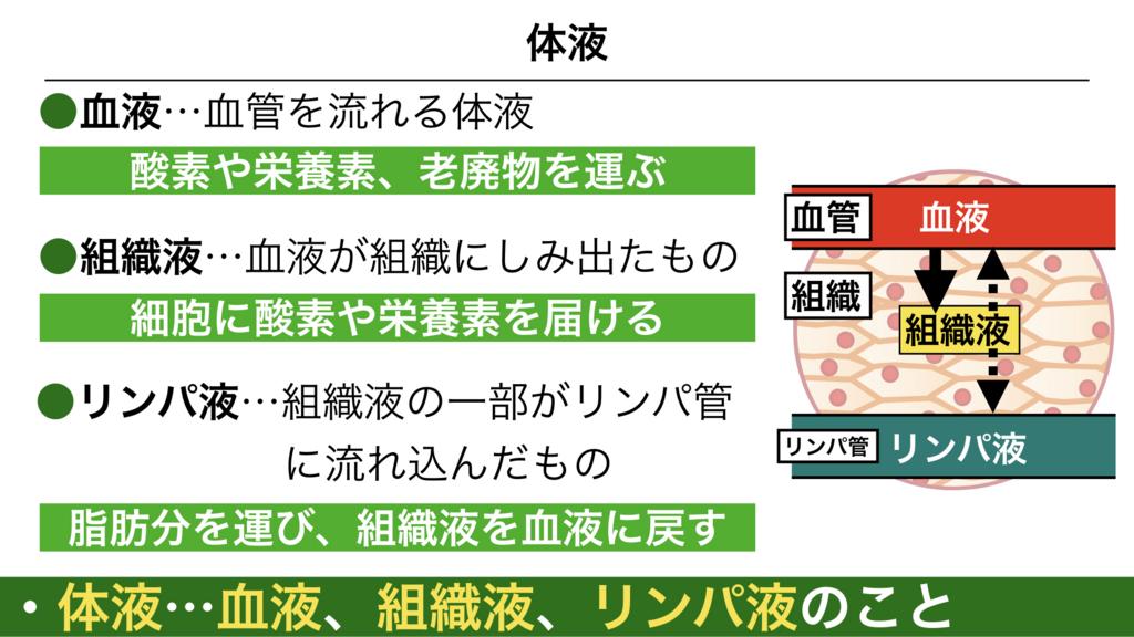 f:id:shimasensei:20180304191950j:plain