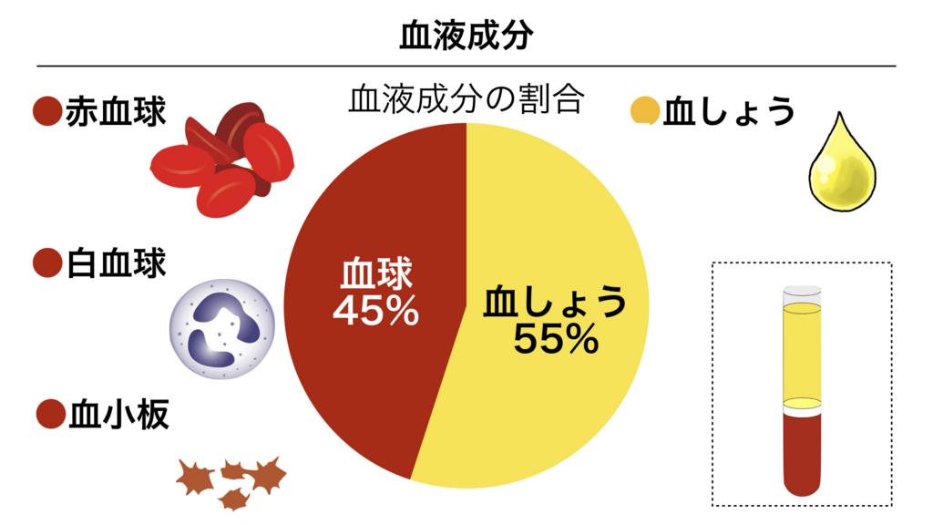 f:id:shimasensei:20180305071340j:plain