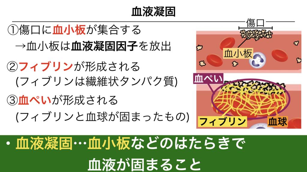 f:id:shimasensei:20180305071606j:plain