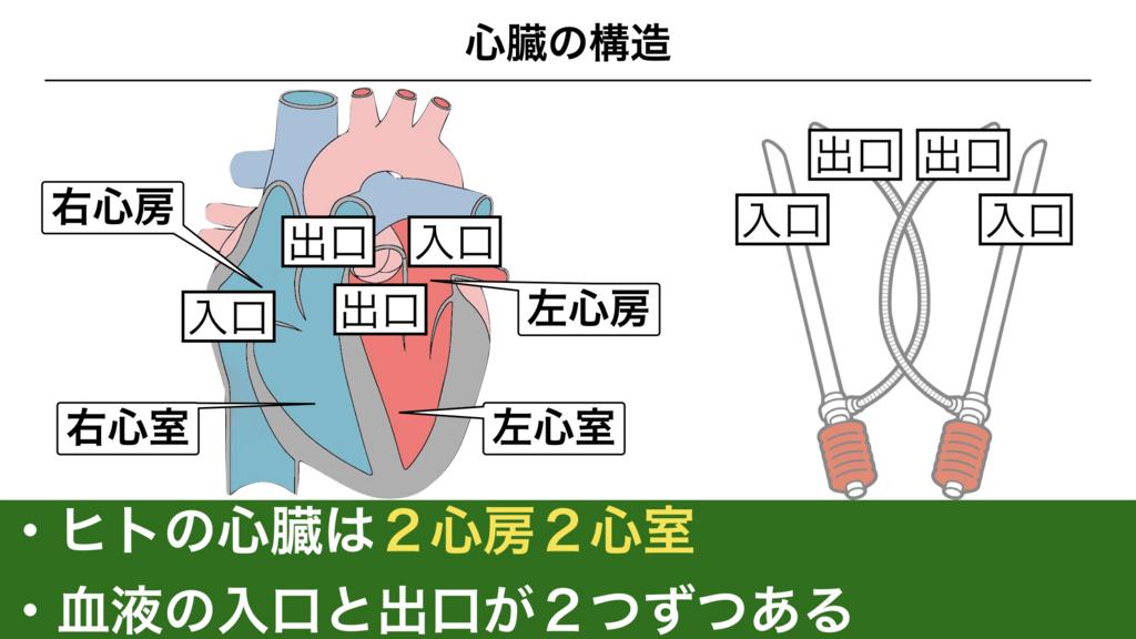 f:id:shimasensei:20180305183736j:plain