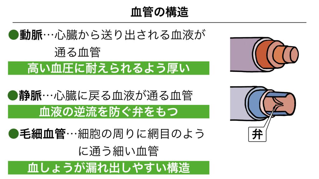 f:id:shimasensei:20180305183941j:plain