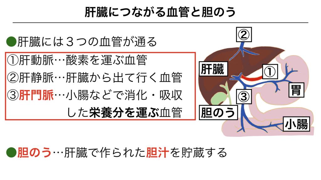 f:id:shimasensei:20180306180205j:plain
