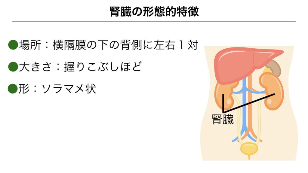 f:id:shimasensei:20180306183600j:plain
