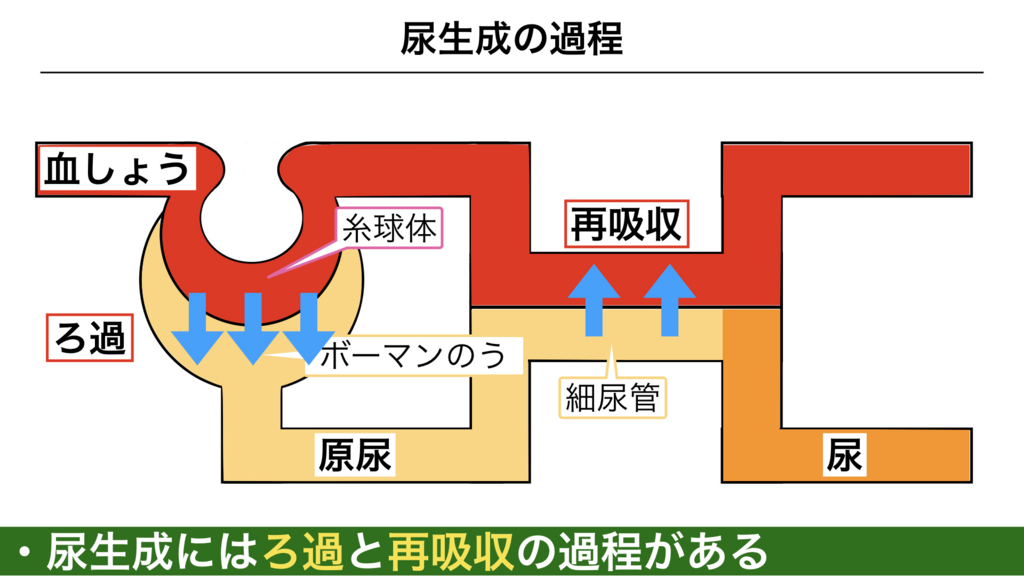 f:id:shimasensei:20180306184227j:plain