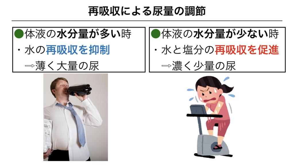 f:id:shimasensei:20180306184942j:plain