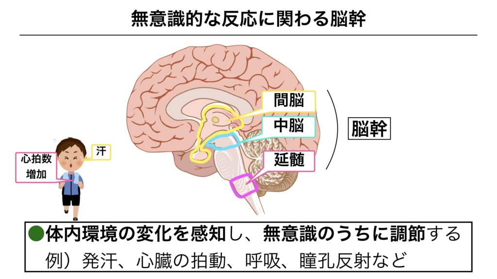 f:id:shimasensei:20180307173635j:plain