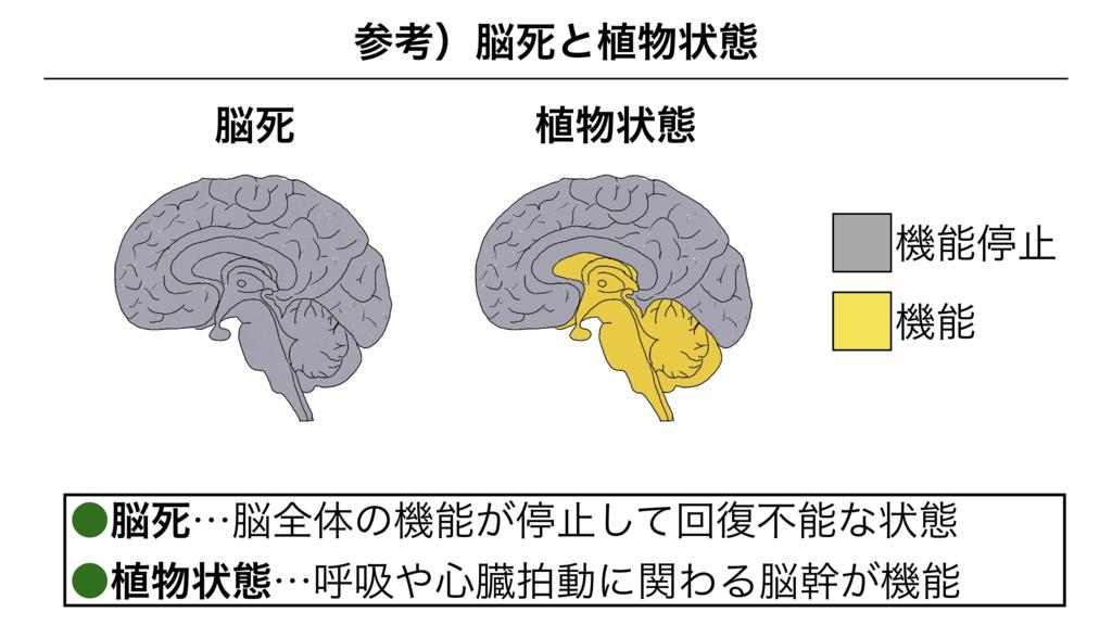 f:id:shimasensei:20180307173928j:plain