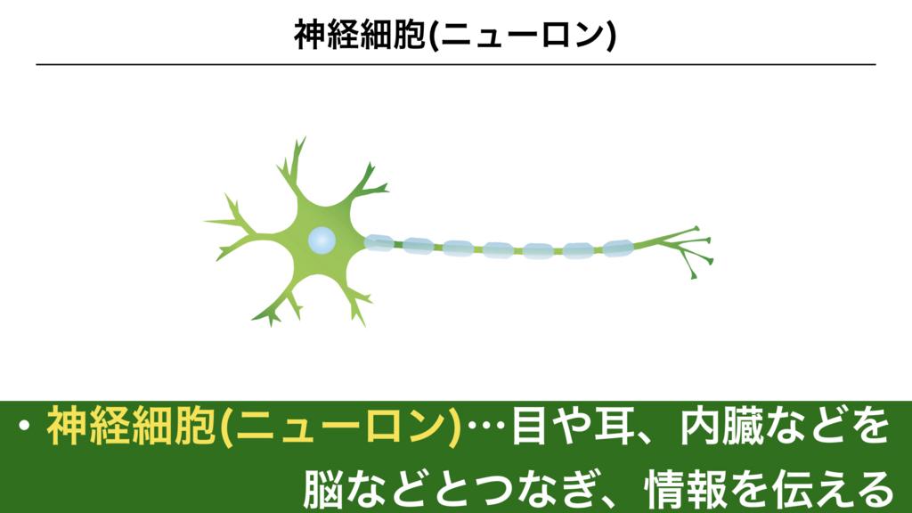 f:id:shimasensei:20180307174059j:plain