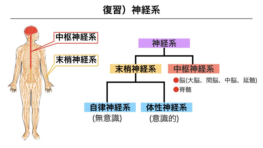 f:id:shimasensei:20180307180154j:plain