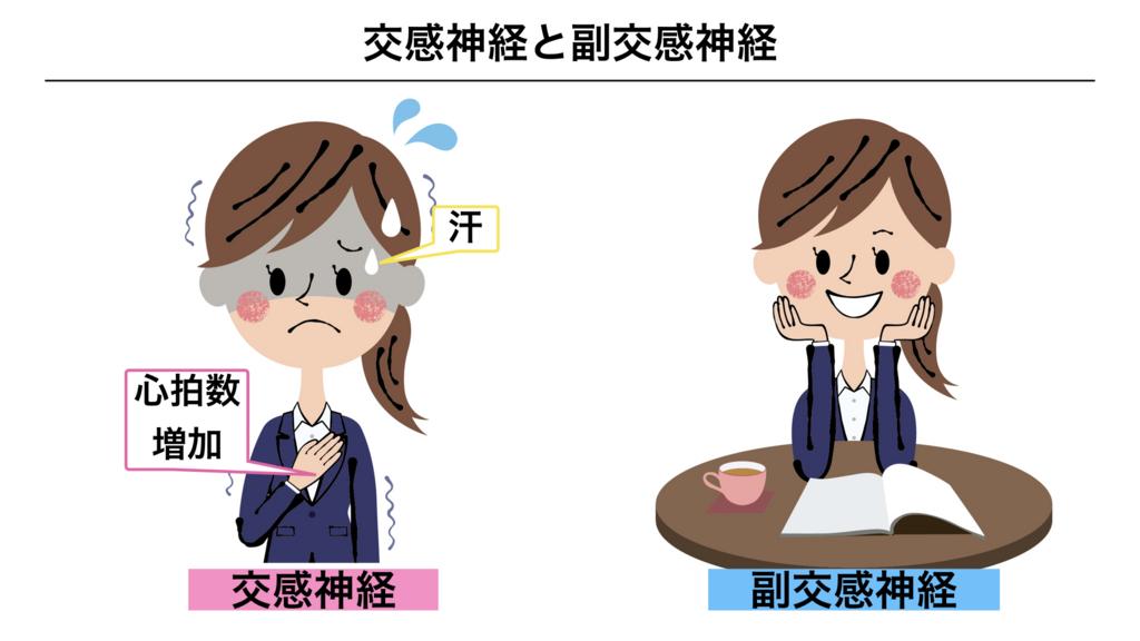 f:id:shimasensei:20180307180348j:plain