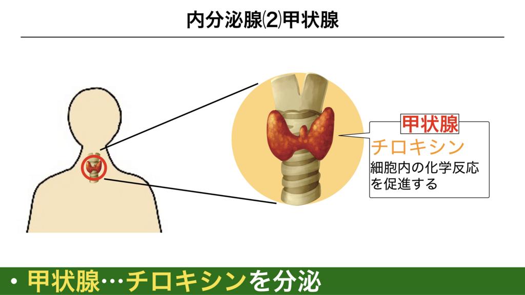 f:id:shimasensei:20180309124522j:plain