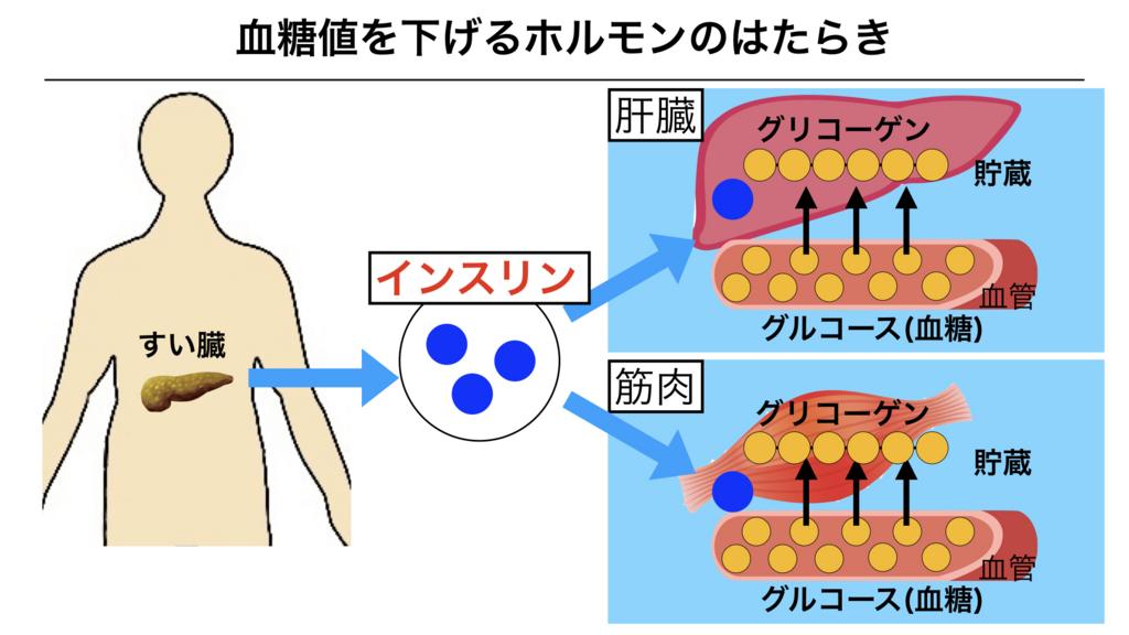 f:id:shimasensei:20180310084813j:plain