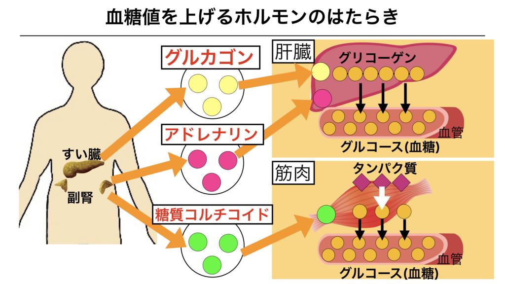 f:id:shimasensei:20180310084852j:plain