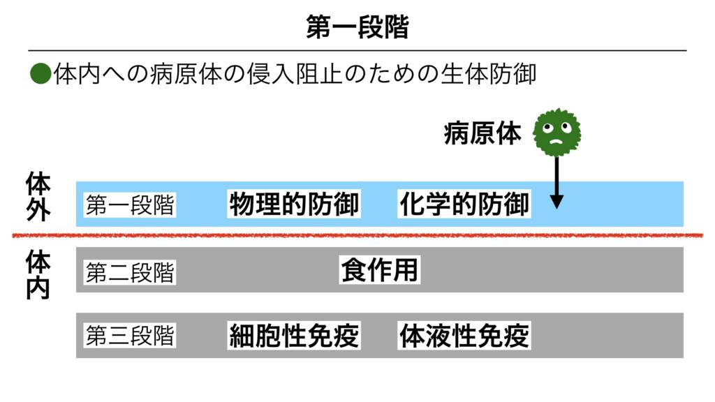 f:id:shimasensei:20180311082233j:plain
