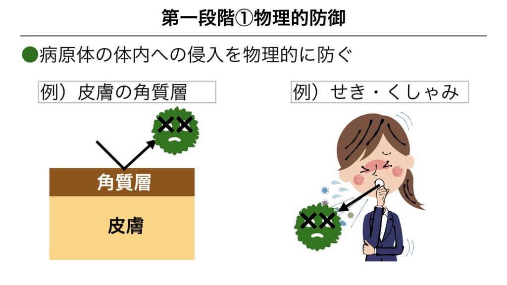 f:id:shimasensei:20180311082317j:plain