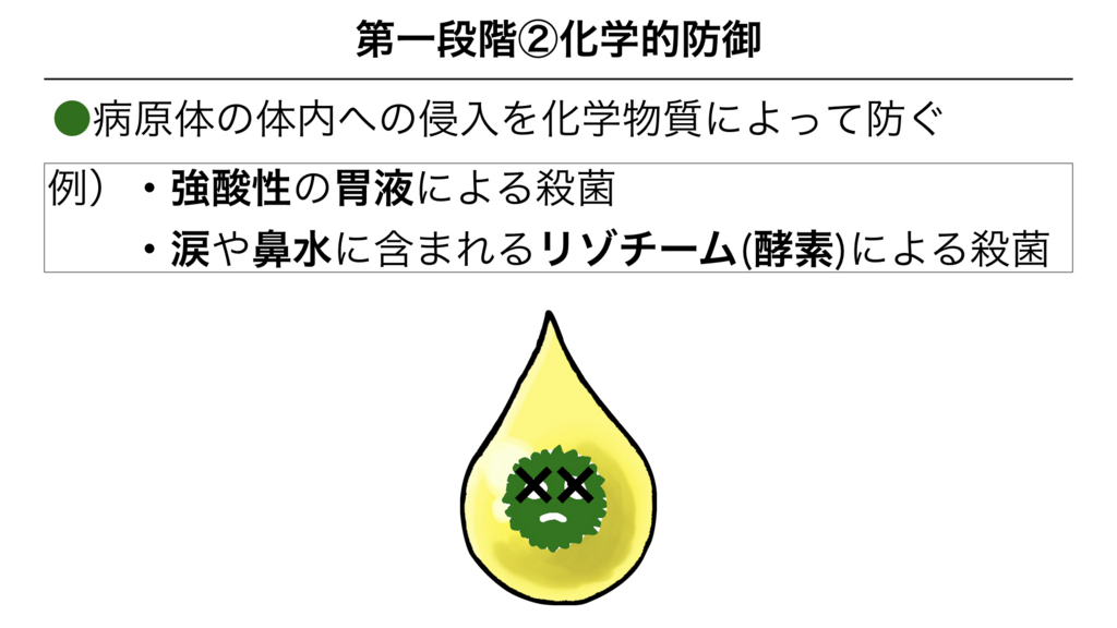 f:id:shimasensei:20180311082353j:plain