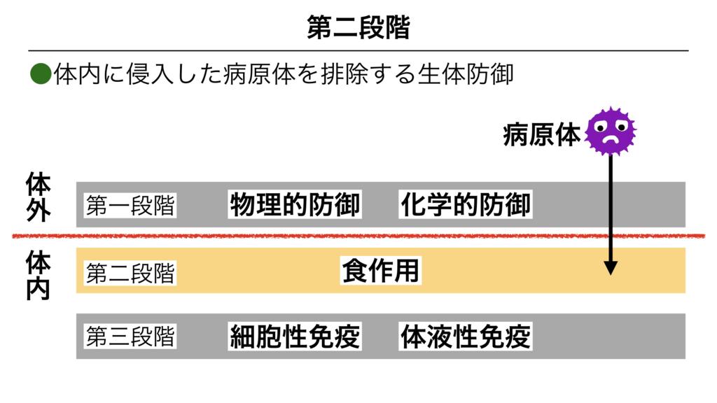 f:id:shimasensei:20180311082710j:plain