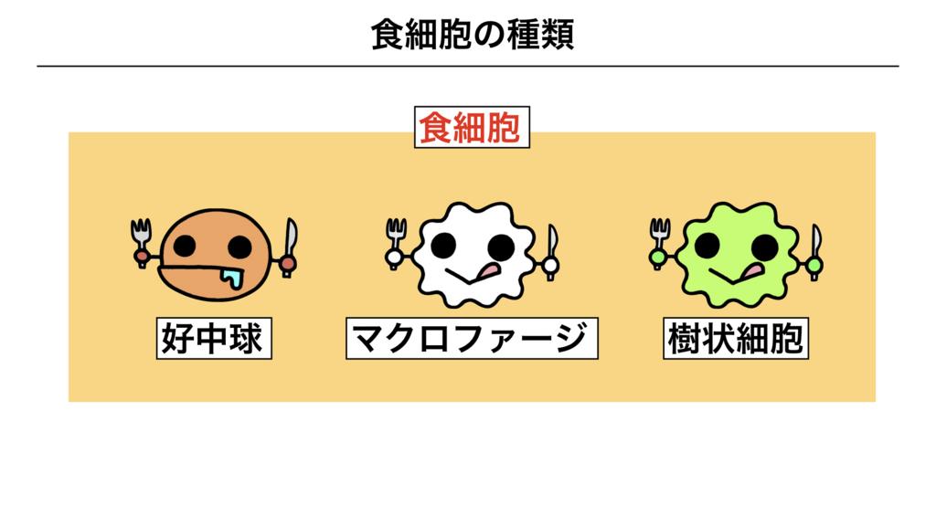 f:id:shimasensei:20180311082810j:plain