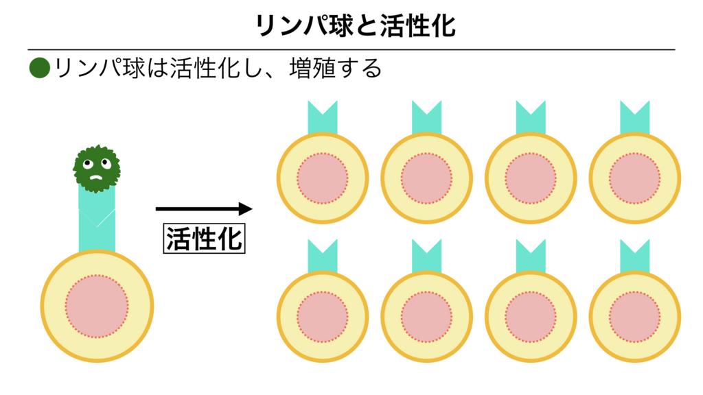 f:id:shimasensei:20180312074449j:plain