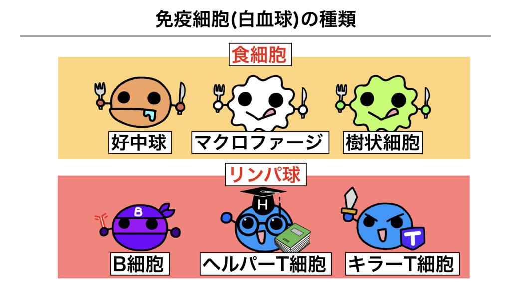 f:id:shimasensei:20180312074507j:plain