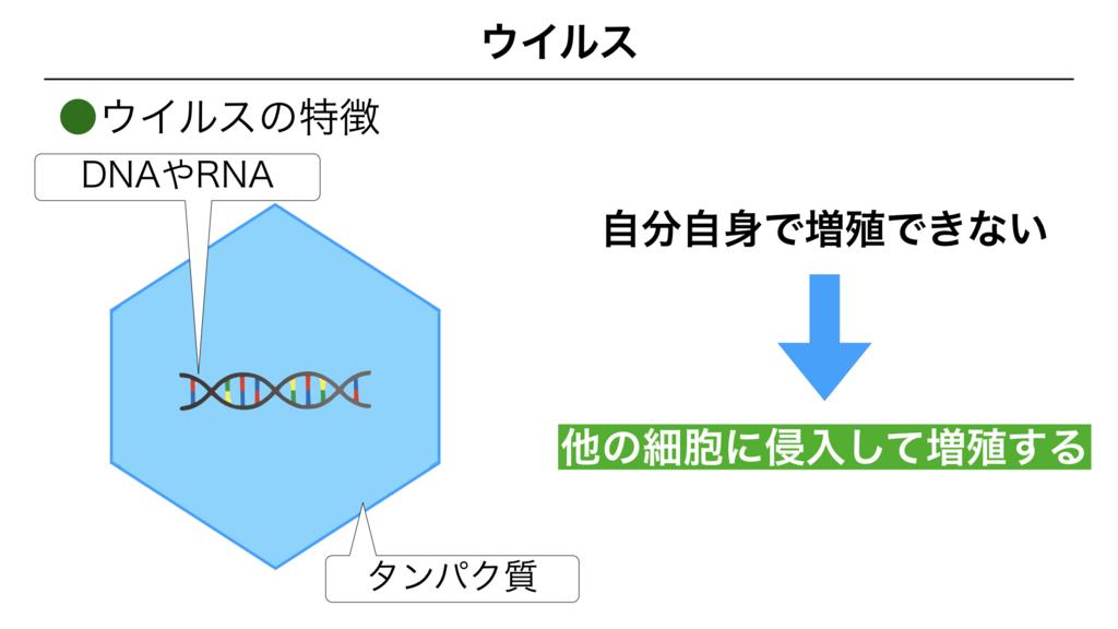 f:id:shimasensei:20180312074653j:plain
