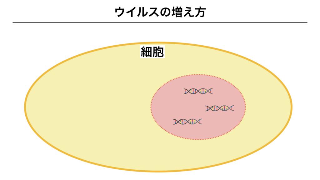 f:id:shimasensei:20180312075041j:plain